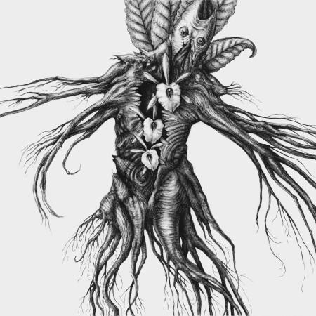Botanist IV - Mandragora - promo cover!
