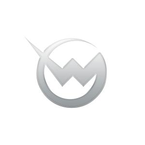 Wondergirls - large logo - Silver & White