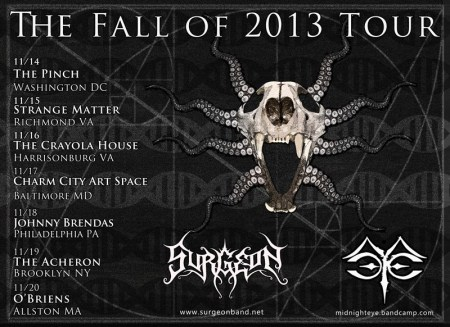 Surgeon - Fall Tour 2013 - promo flyer - November