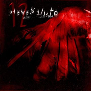 Steve Saluto - 12 - solo EP - 2013 - promo cover pic