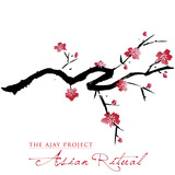 The Ajay Project - Asian Ritual - promo cover pic