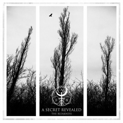 A Secret Revealed - The Bleakness - promo album cover pic - 2015 - #ASRMO21