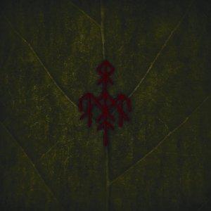 WARDRUNA - Yggdrasil - promo album cover pic - 2013 - #76738MO